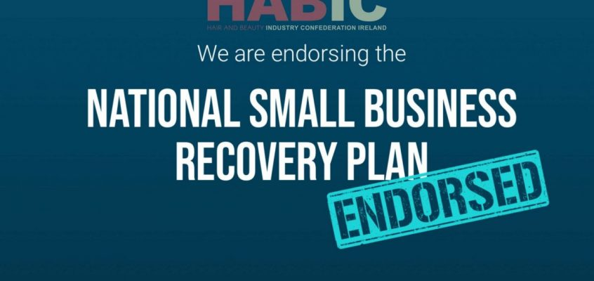 HABIC formally endorses the SME Recovery Plan.